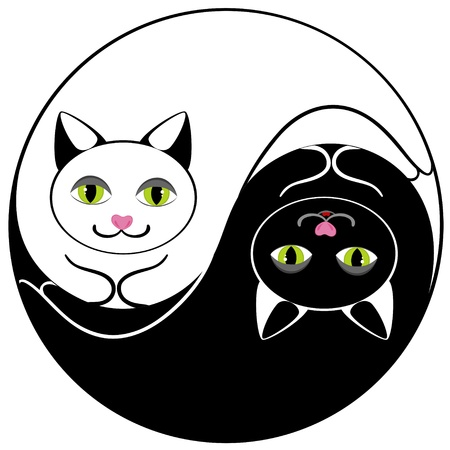 yin y yan: Cat ying yang símbolo de la armonía y el equilibrio