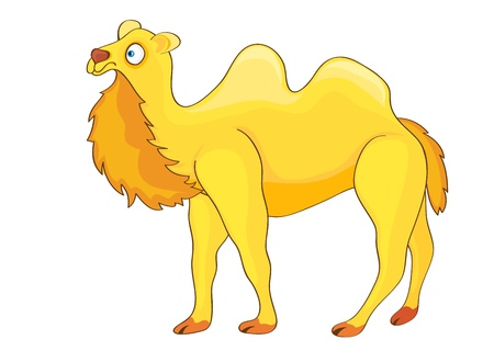 Illustration of yellow cartoon funny camel on white background  Stock Vector - 14118128