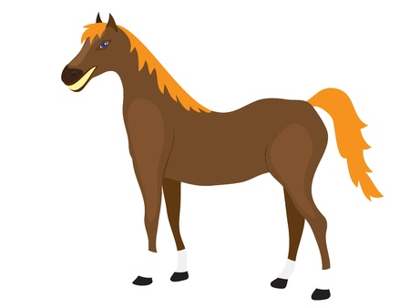 Cartoon Horse Stands on a White Background Illustration