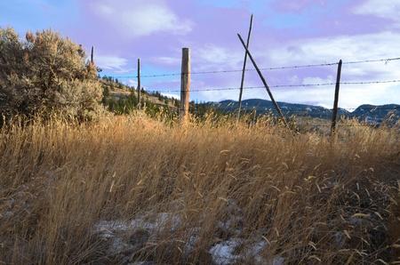 winter scene, Ashcroft, BC Canada