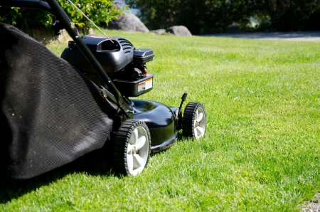 lawn mower cutting grass photo