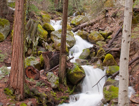 runoff: Water fall during spring runoff in British Columbia Canada