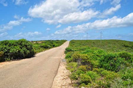 The long road Stok Fotoğraf