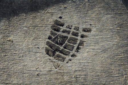 mud print: Background wood flooring with mud and shoe print in the pipeline Stock Photo