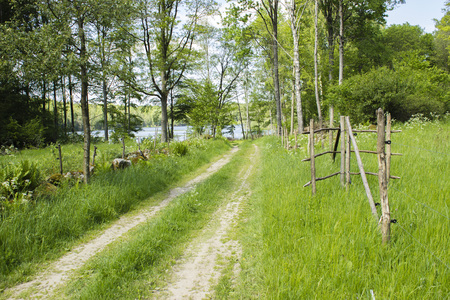 single lane road: Lets take a walk to the lake in this meditative scenery.