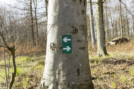 ambivalence: Sign with hiking directions in the forest Stock Photo