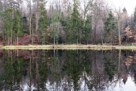 The lake is a mirror to the trees