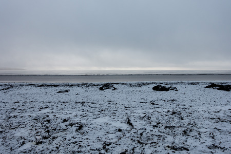 Snow and seaweed on a beach in winter