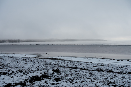 Shoreline covered in snow and seaweed in winter