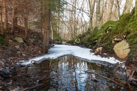 Partially frozen stream flowing through winter forest