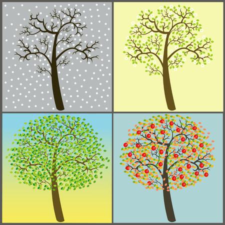 bomen collectie - vier seizoenen