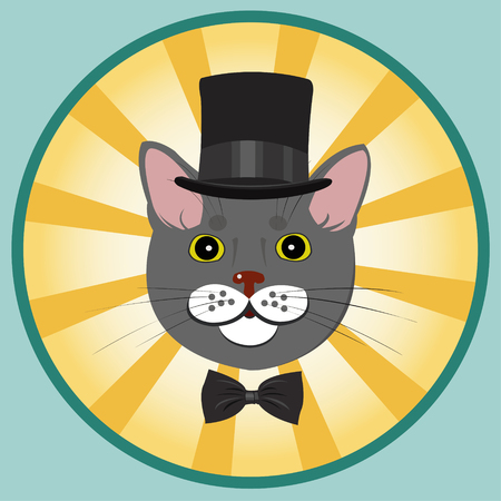 well dressed: elegant cat in top hat and bow tie