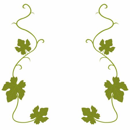 Druiven vine achtergrond Stock Illustratie