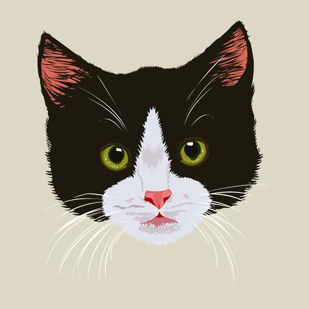 Cute black kitten.Portrait of black cute tabby kitten on light background. Illustration