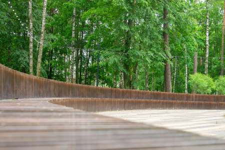A solid bench made of vertical wooden sticks located in a semicircle located in a park with green vegetation