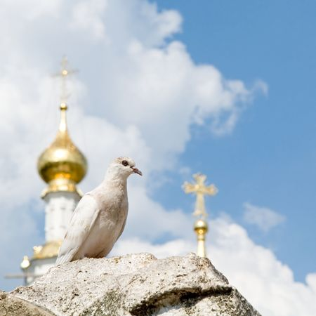 White pigeon with church domes and blue sky at background Stock Photo - 1091788