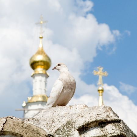 White pigeon with church domes and blue sky at background Stock Photo - 1091789