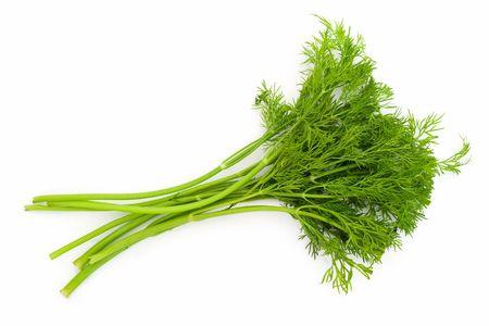 juicy green dill on a white background Foto de archivo