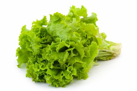 Lettuce. Green salad on a white background.