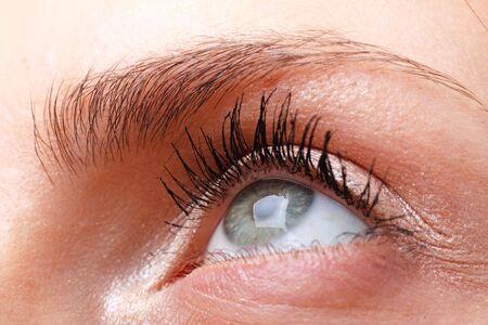 Beautiful female eye with makeup close up Stock Photo - 4630659