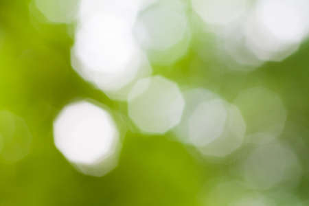 green bokeh abstract light background  Aperture nine blades  photo