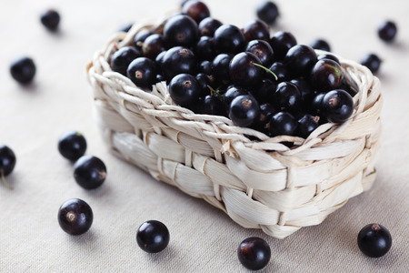Fresh blackcurrant in a basket. Stock Photo - 35083188