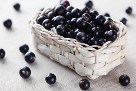 Fresh blackcurrant in a basket.