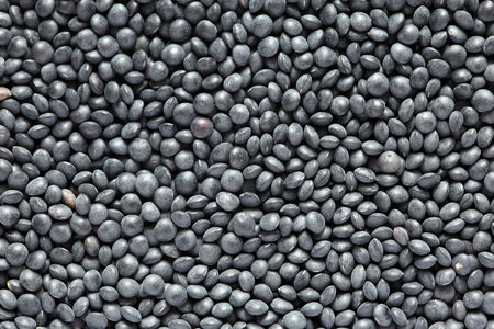 Black beluga lentils background. Close-up.