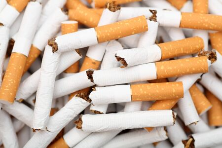 pernicious habit: Broken cigarettes close-up. Stock Photo