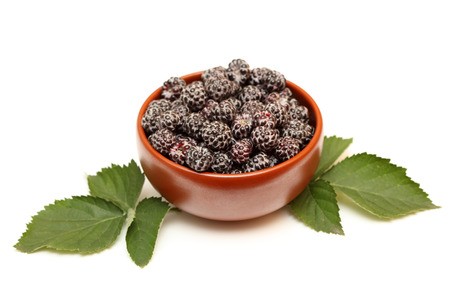 brambleberry: Organic blackberries in bowl and blackberry leaves on white background. Close-up. Stock Photo