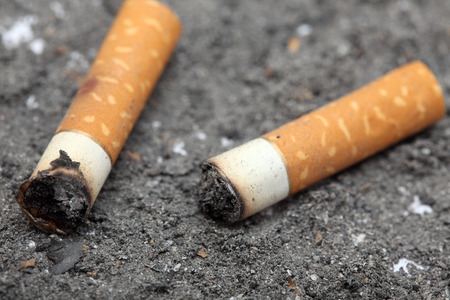 habit: Two cigarette butts on ash background. Unhealthy habit. Close-up.