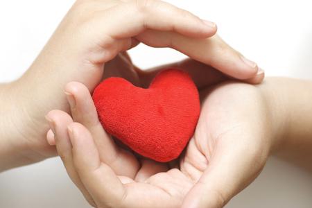 Purple heart in gentle hands Standard-Bild