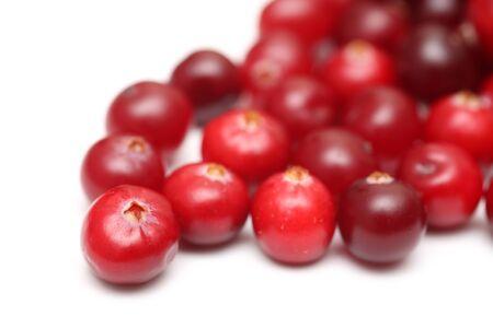 arandanos rojos: Cranberries close-up.
