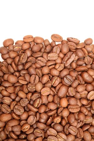 large bean: Coffee Beans close-up.