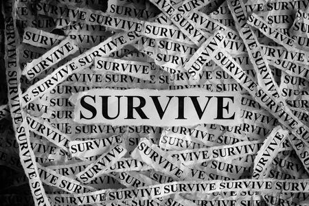 survive: Survive. Torn pieces of paper with the word Survive. Concept Image. Black and White. Closeup.