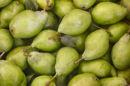 Raw organic green pears. Close up.