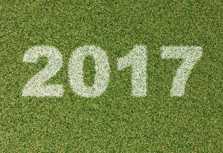 grass field: realistic textured grass football - soccer field. 2017 - written with white grass on the green football field Stock Photo