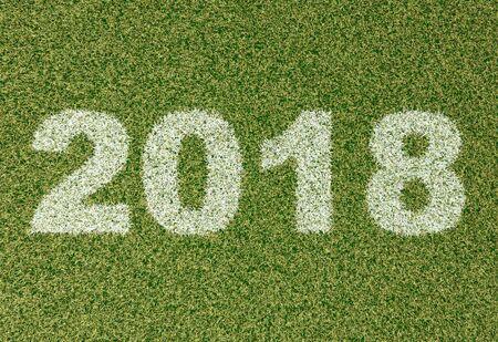 grass field: realistic textured grass football - soccer field. 2018 - written with white grass on the green football field