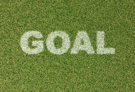 field goal: realistic textured grass football - soccer field. GOAL - written with white grass on the green football field Stock Photo