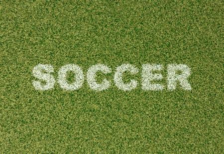 grass field: realistic textured grass football - soccer field. SOCCER - written with white grass on the green football field