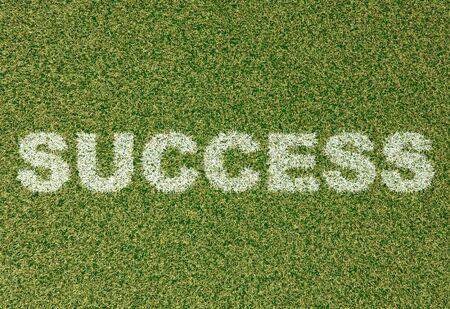 grass field: realistic textured grass football - soccer field. SUCCESS - written with white grass on the green football field