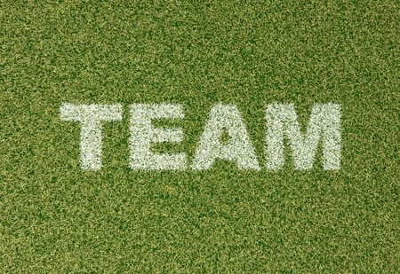 sports field: realistic textured grass football - soccer field. TEAM - written with white grass on the green football field Stock Photo
