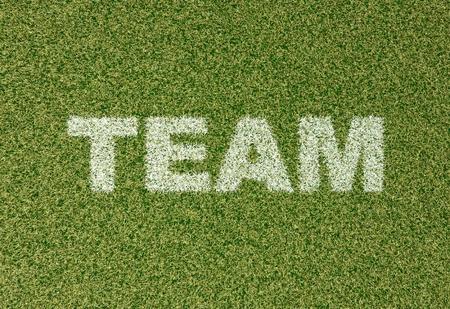 grass field: realistic textured grass football - soccer field. TEAM - written with white grass on the green football field Stock Photo