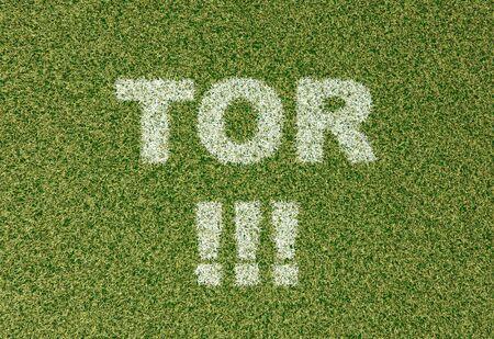 grass field: realistic textured grass football - soccer field. TOR - written with white grass on the green football field