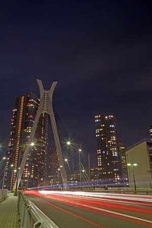 nightview: tokyo nightview