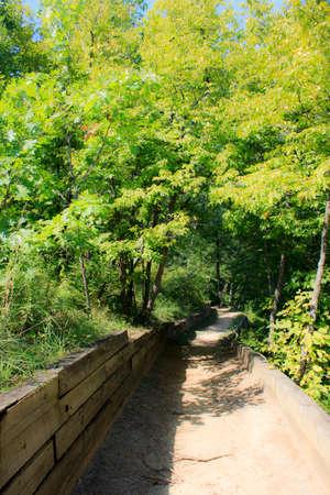 bluff: Ferry Bluff Trail