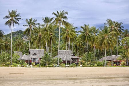 exotism: Bungalows on a beautiful beach in thailand. Ko phi phi island.