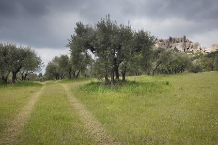 Les baux de provence. Medieval city up on a hill. Provence, France. photo