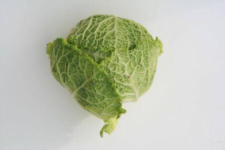 nervure: cabbage