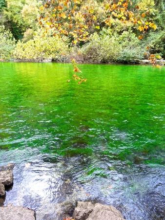 vaucluse: The river Sorgue Fontaine de Vaucluse Stock Photo